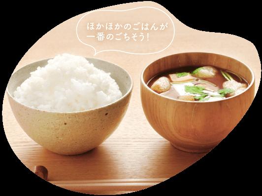新潟米 お米 通販