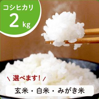 hikari-02