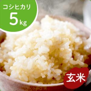 koshihikari-g