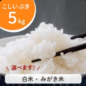 koshiibuki-5