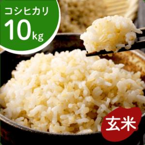 koshihikari-g-10