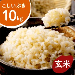 koshiibuki-g10