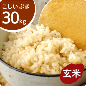 koshiibuki-g-30